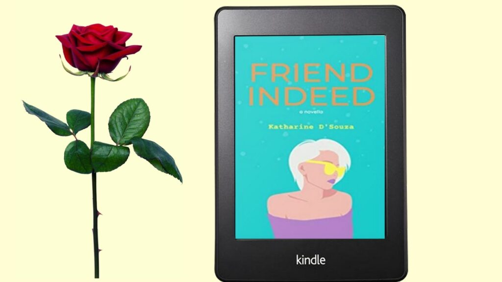 Friend Indeed by Katharine D'Souza - abook that explores secrets, lies and domestic noir